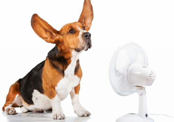 dom-energooszczedny-i-pasywny-wentylacja-z-odzyskiem-ciepla